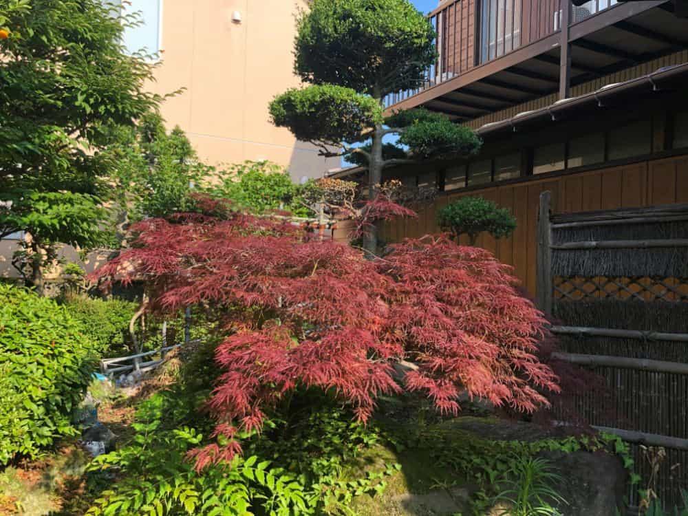 鴨宮A邸。趣のある庭と日本家屋